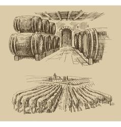 vineyard doodle vector image