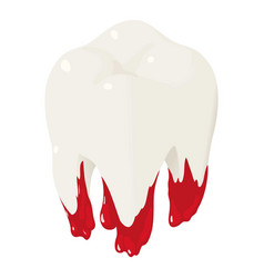 bloody tooth icon isometric style vector image