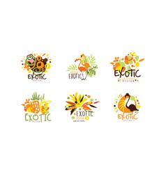 exotic logo original design collection summer vector image