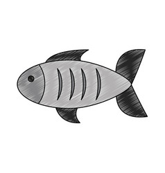 fish seafood symbol vector image