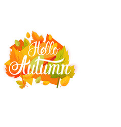 hello autumn yellow leaf fall banner abstract vector image