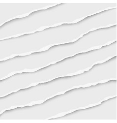 oblong layers torn white paper tears vector image