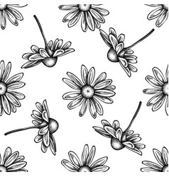 Seamless pattern with black and white chamomile vector
