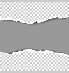 snatched hole from middle of transparent sheet vector image