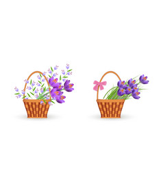 Spring floral bouquets in wicker baskets set vector