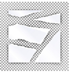 torn paper blank realistic scraps of vector image