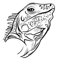 head iguana profile sketch tattoo vector image vector image