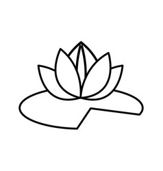 Lotus flower leave natural decorative line vector