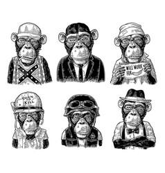 monkey in human clothes redneck businessman vector image vector image