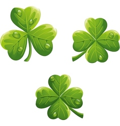 object to the St Patricks Day Clover vector image vector image
