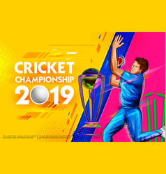 Bowler bowling in game of cricket championship vector