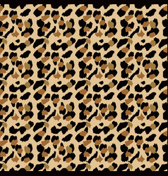 fashionable leopard seamless pattern stylized vector image