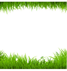 green grass borders vector image