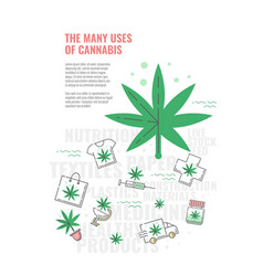 Many uses of cannabis banner with line icon of vector