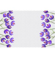 Purple tulip flowers border frame vector