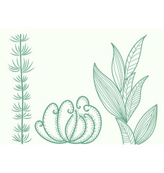 seaweed at the bottom collection of species for vector image