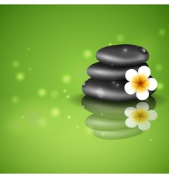 Spa Stones With Frangipani Flower vector image