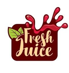 spray of fresh juice vector image