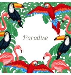 Tropical birds background design with palm leaves vector image