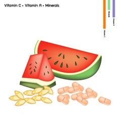 Watermelon with Vitamin C and Vitamin A vector
