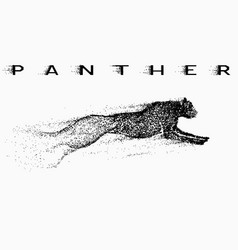 attack motion of panther vector image vector image