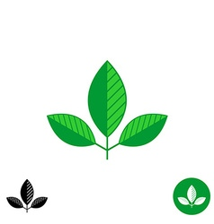 Three leaves simple natural logo vector image vector image