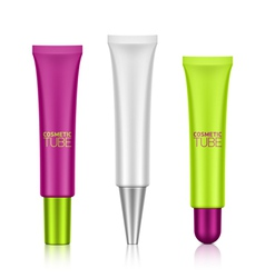 Cosmetic tube with screw caps vector image vector image