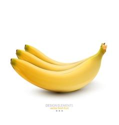 bananas on white background vector image