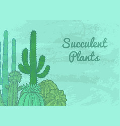 Cacti plants background vector