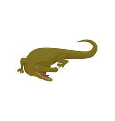 Crocodile predatory amphibian animal vector