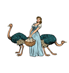 ostrich farm eggs woman peasant farmer vector image