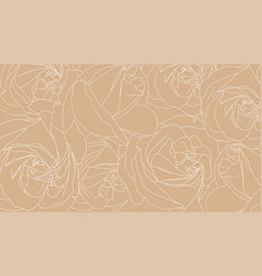 roses bud outlines pattern of white roses on vector image