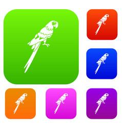 brazilian parrot set color collection vector image vector image