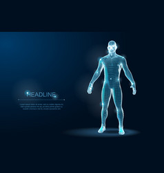 Human body 3d polygonal wireframe blueprint vector