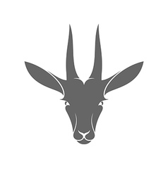 Isolated antelope on white background vector