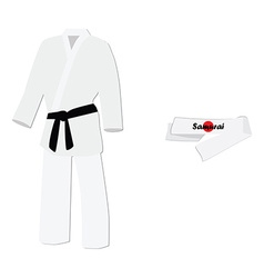 Kimono and headband vector image