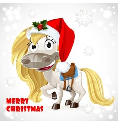 Merry Christmas card with cute white baby horse vector image