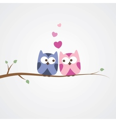owls in love vector image