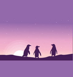 Silhouette of penguin at sunrise scenery vector