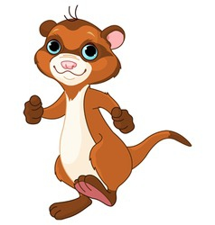 Cartoon ferret vector