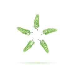 Palm leaf icon vector