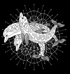 Three dolphins against white cirlce on black vector