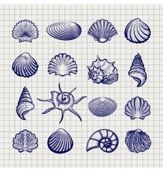 Ball pen sketch sea shells vector image
