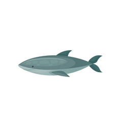 flat icon of blue shark long-bodied marine vector image