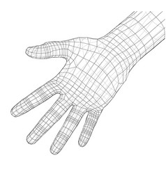 Human hand wire-frame vector