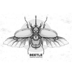 Realistic hand drawing rhinoceros beetle vector