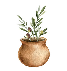 watercolor card with olive branches in a vector image