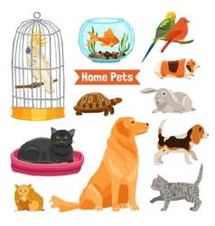 Home Pets Set vector image vector image