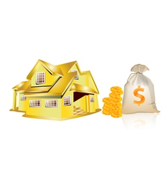 house and money vector image