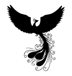 phoenix bird silhouette ancient mythology fantasy vector image